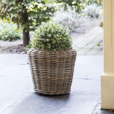 Drypot plantenbak (m)