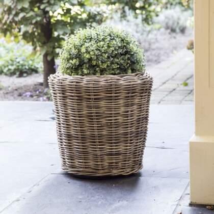 Drypot plantenbak (l)