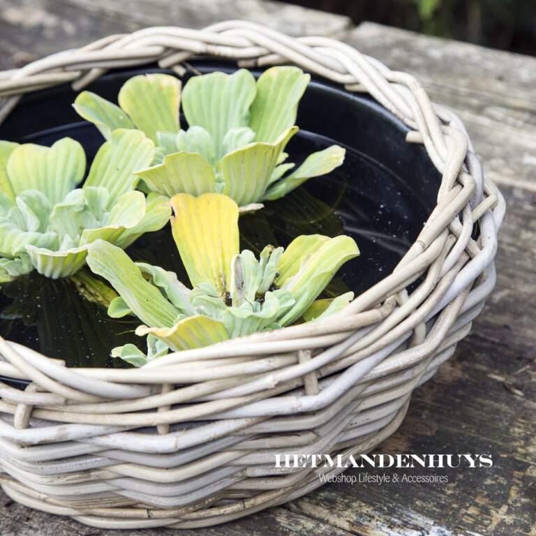 Drypot bloemenmanden