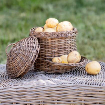 aardappelmand_rinse_klein_vol_DDW002M